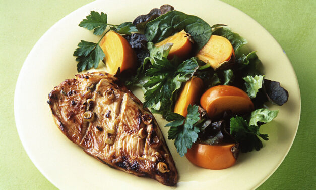 Soy and Ginger British Turkey Steaks